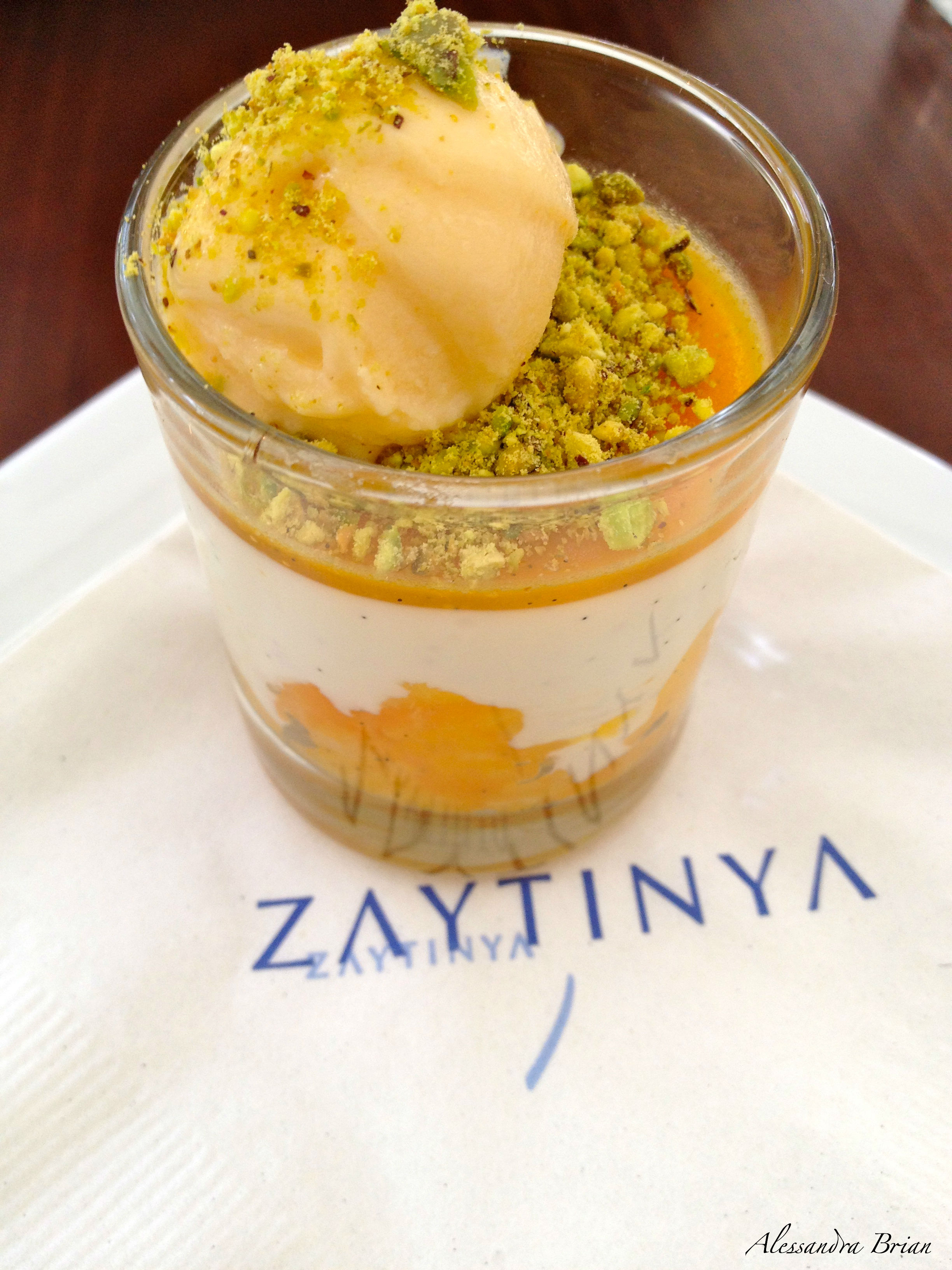 Yogurt Mousse With Apricot Sauce Recipes — Dishmaps