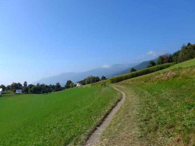 South Tyrol